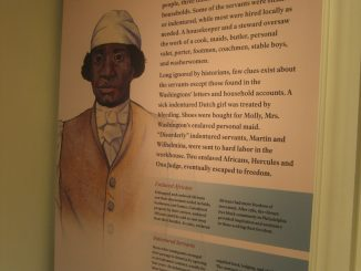 Information about Washington's cook, Hercules