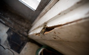The broken door frame in Kennedy's kitchen is one of many repairs needed throughout the house.