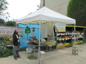 Amir Hameen working at the Sharnel Market on 21st and Susquehanna