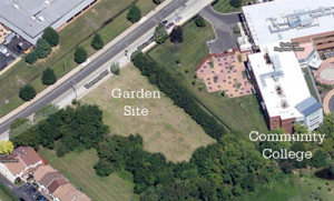 Here is a sky view of where the garden will be located.