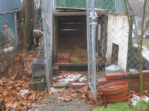 In 2012, Maureen Breen's chickens were confiscated from her backyard after a neighbor complained.