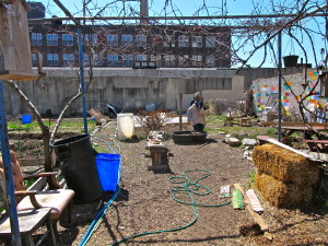 Many community gardens in the area are cleaning up and preparing for the spring growing season.