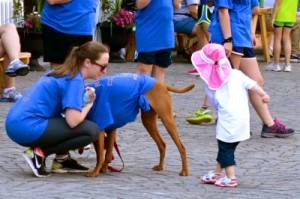 A child played with one of the walk's many four-legged participants.