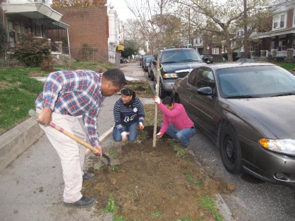 Olney Tree Tender Volunteers begin work on a newly planted tree. Photo by JOHN DODDS