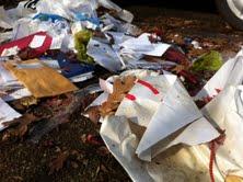 Trash masks the fallen leaves along Catherine St