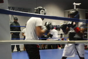 Trainer Wade Hinnant looks on as one of his many fighters spar.