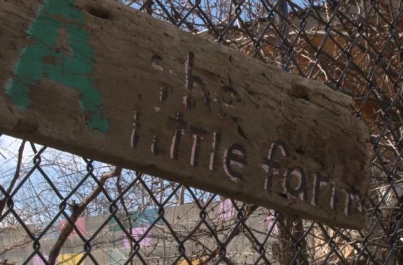 """La Finquita """"The Little Farm"""""""