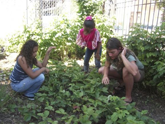 Youth Program Gardening (Courtesy: Historic Fairhill)