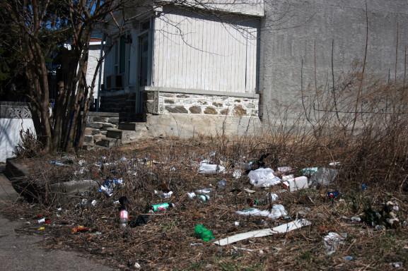 Marvine Street Litter