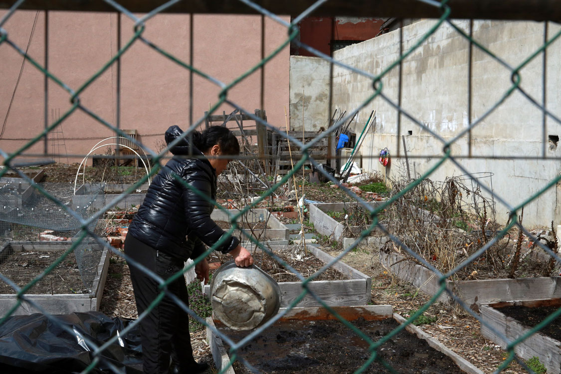 A neighbor waters a plot at Moore Street Community Garden