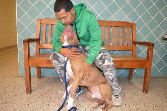 """Volunteer Chaz Lopez said, """" I was always getting in trouble, and for me to cope I started  being with animals. I've been doing it for nine months."""""""