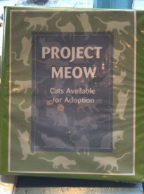 Project Meow 1