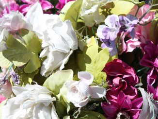 Close-up shot of multi-color florals.
